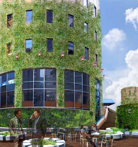 大阪マルビル緑化プロジェクト 緑の大樹 完成予想図