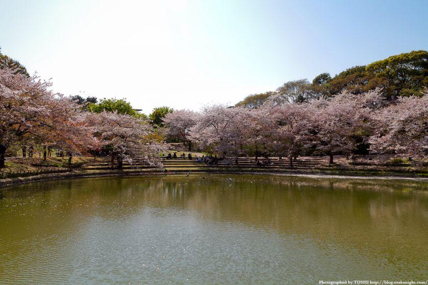 鶴見緑地の桜 2011年4月 03