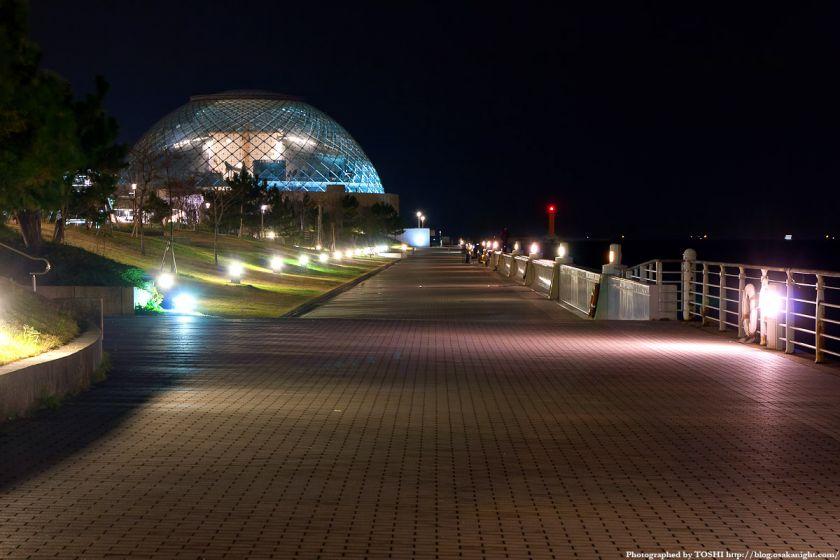 なにわの海の時空館とシーサイドコスモ 夜景