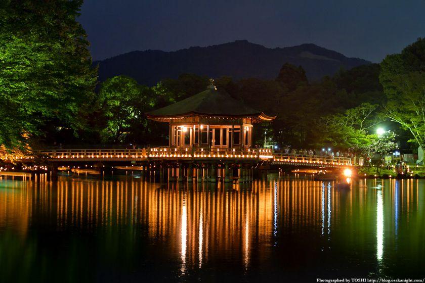 奈良 浮見堂 ライトアップ夜景 02