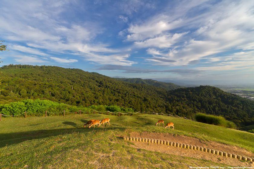 若草山 山頂からの風景 01