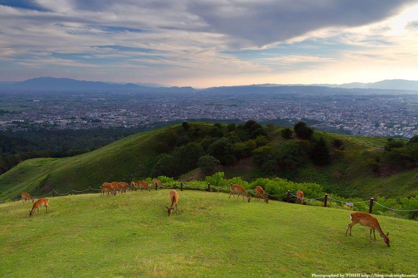 若草山 山頂からの風景 02