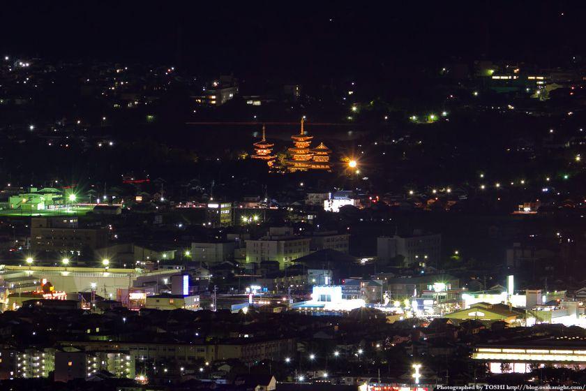 若草山から見た薬師寺の夜景