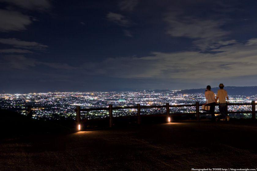 若草山から見た奈良の夜景 03