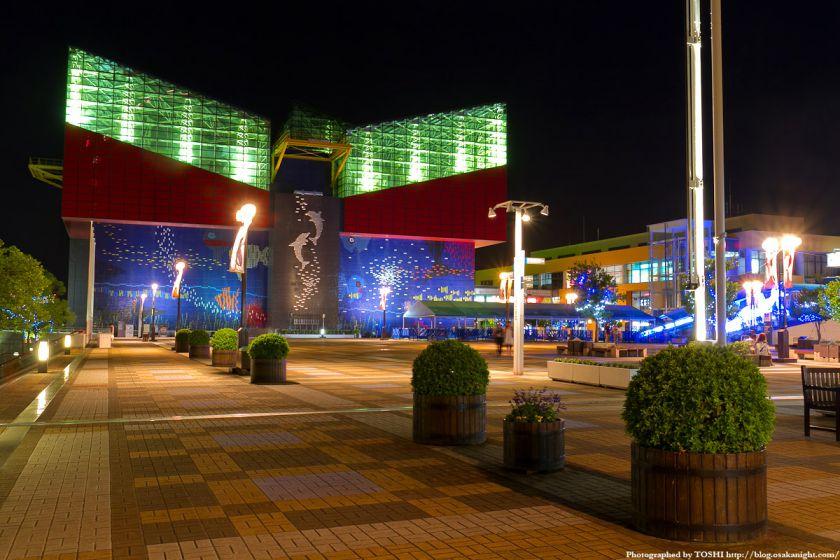海遊館前の広場 夜景