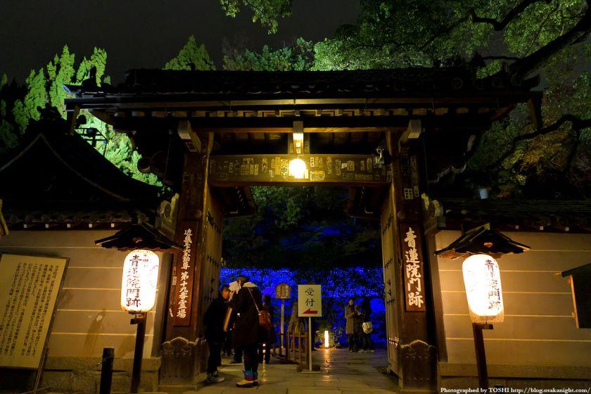 青蓮院門跡 夜間特別拝観 01
