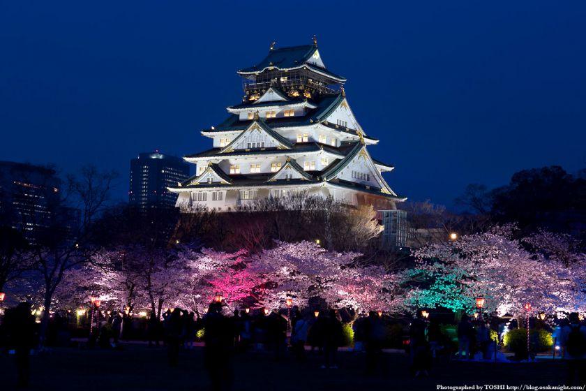 大阪城西の丸庭園観桜ナイター(OSAKA夢さくら)2012 01