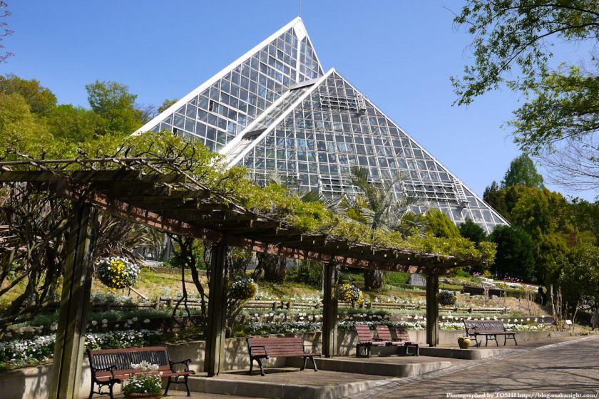 大阪府立花の文化園(フルルガーデン) 2012年4月 11