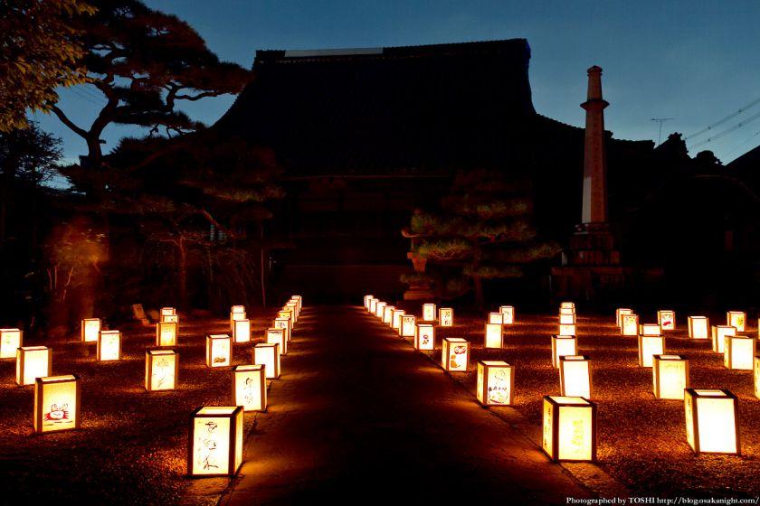 富田林寺内町燈路 2012年8月 04 (興正寺別院 )