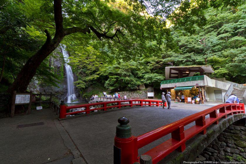 箕面大滝のライトアップ夜景 写真&動画