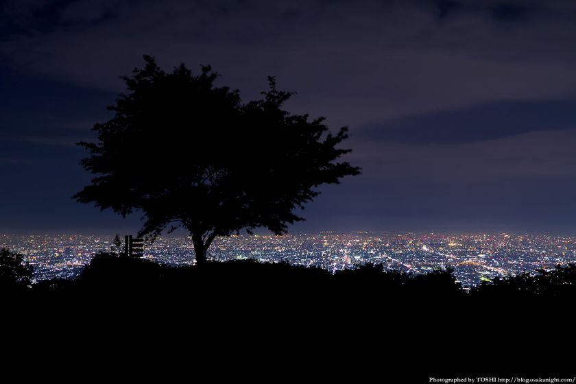 生駒山 なるかわ園地 ぼくらの広場 夜景 05