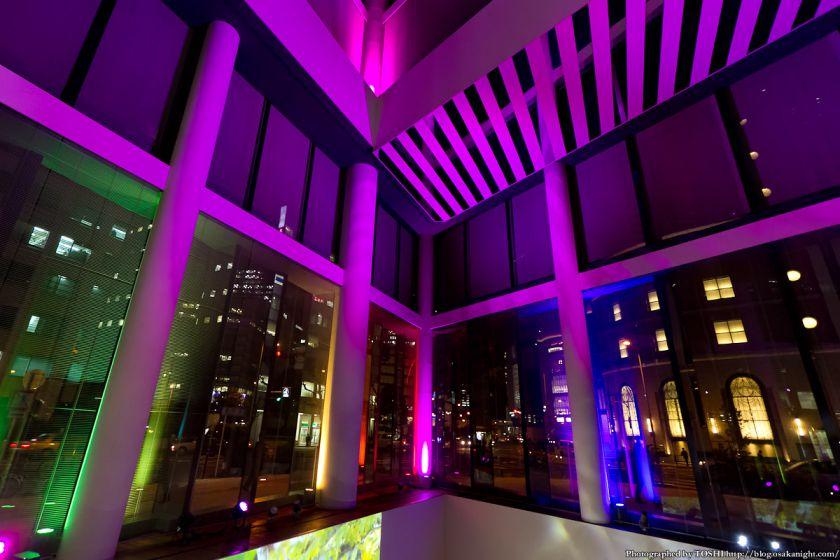 フコク生命の森アトリウム ライトアップ 2012年11月 03