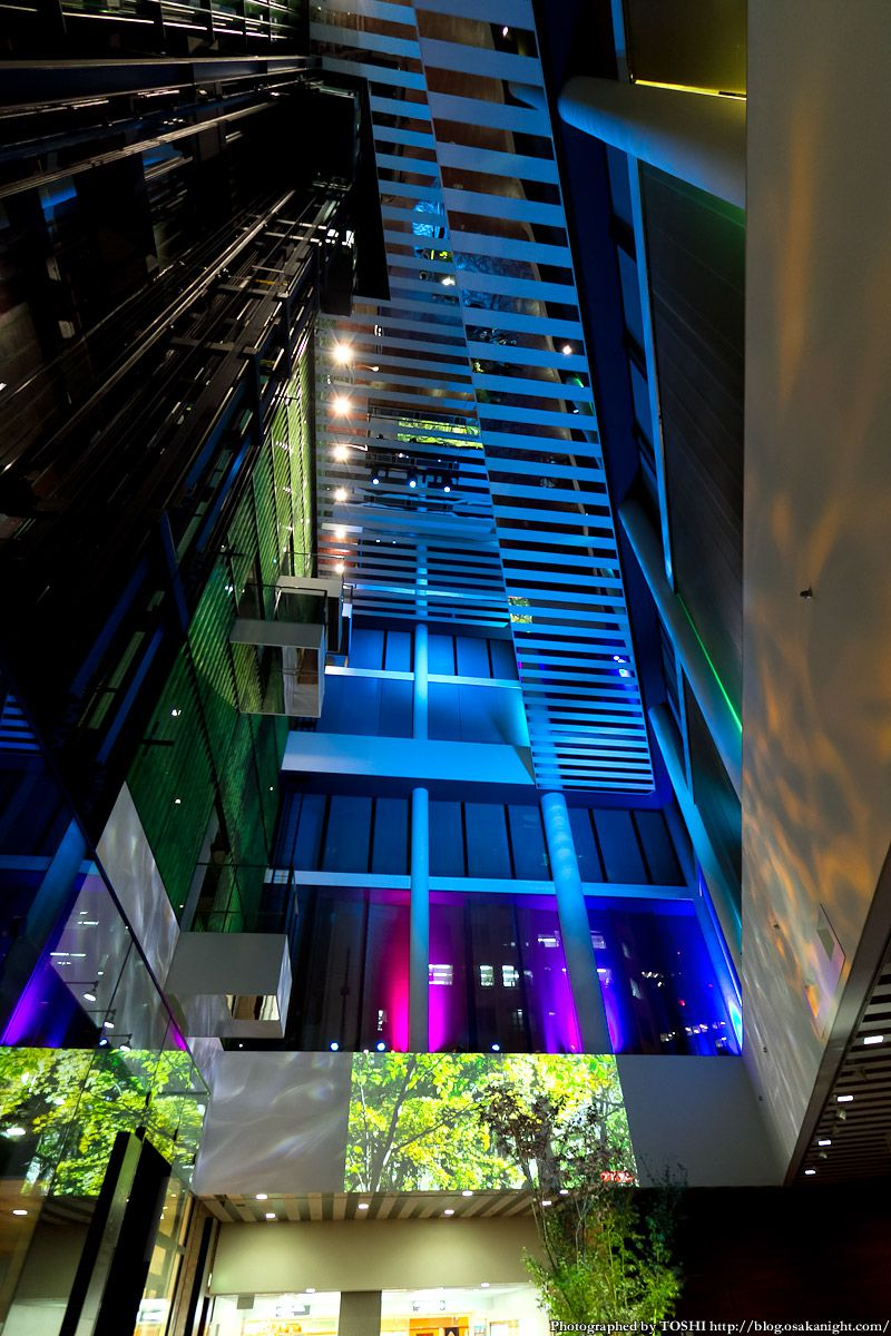 フコク生命の森アトリウム ライトアップ 2012年11月 06