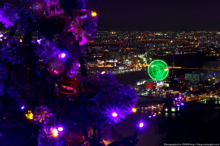 大阪府咲洲庁舎コスモタワー展望台 100ツリーズ・クリスマス2012 03