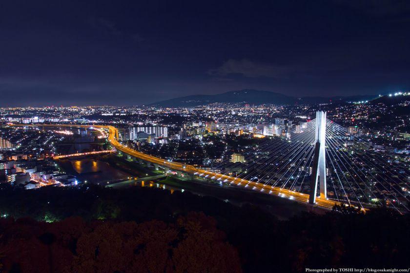 五月山 秀望台 夜景 2012年8月 02