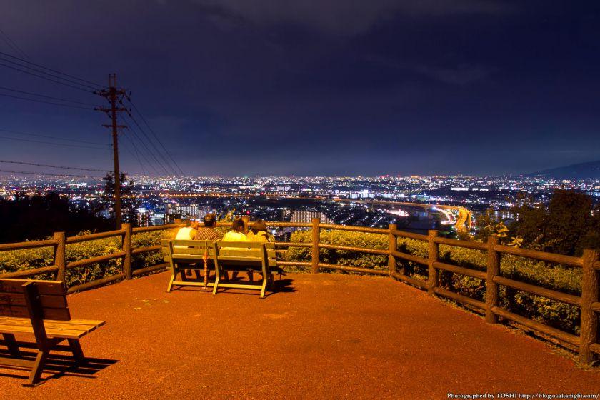 五月山 秀望台 夜景 2012年8月 04