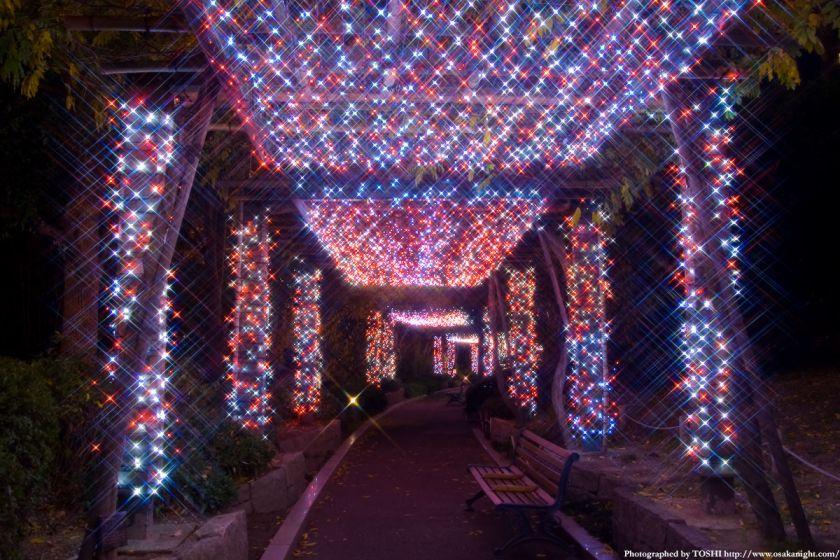 OAPのクリスマス・イルミネーション01
