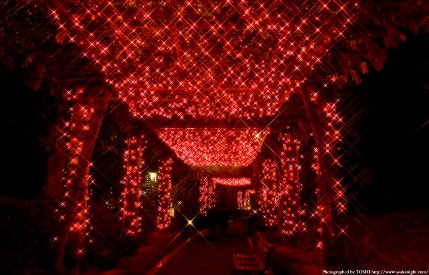 OAPのクリスマス・イルミネーション03