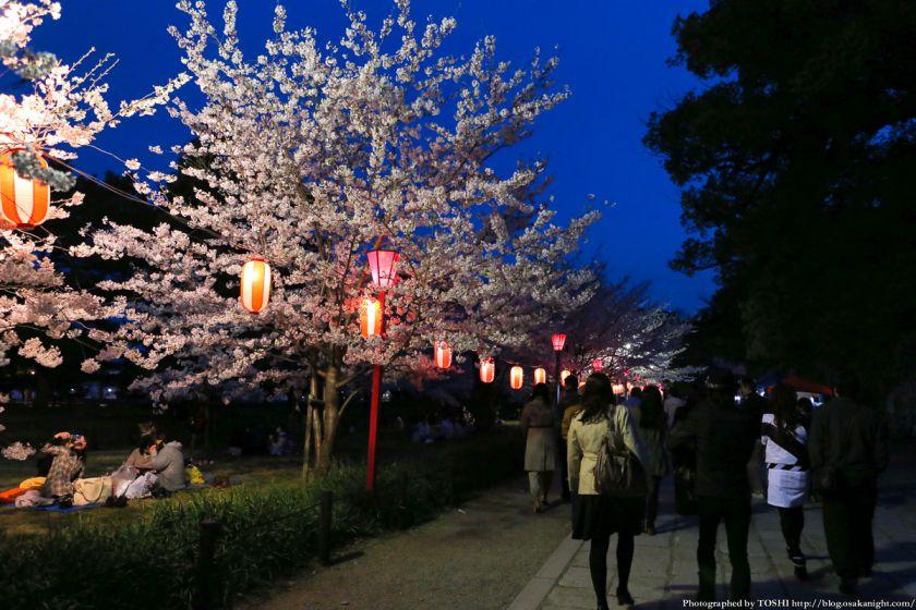 和歌山城 桜まつり 夜桜 2013 01