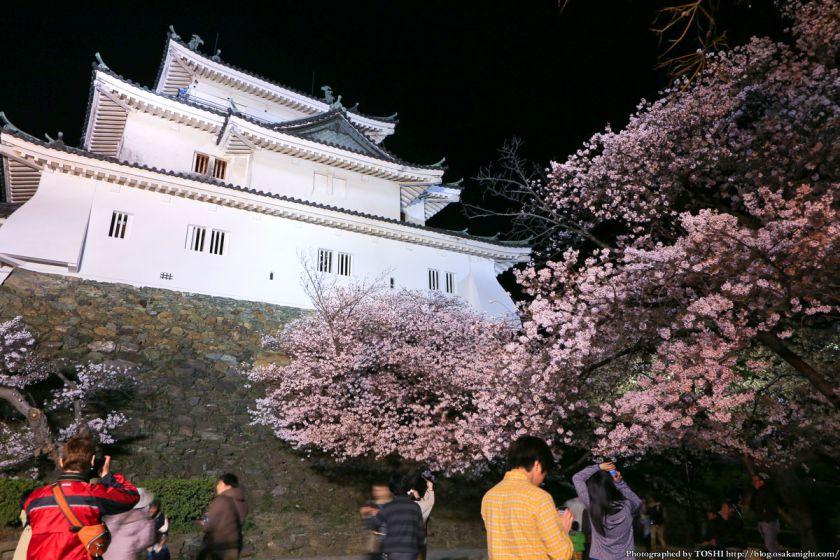 和歌山城 桜まつり 夜桜 2013 06