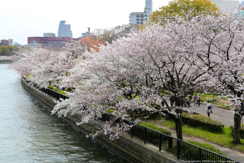 桜之宮公園 桜満開の大川沿い 2013 04