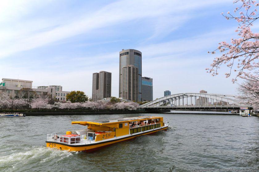 桜之宮公園 桜満開の大川沿い 2013 06 (銀橋とOAP)
