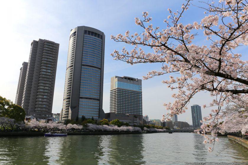 桜之宮公園 桜満開の大川沿い 2013 07 (OAP 大阪アメニティパーク)