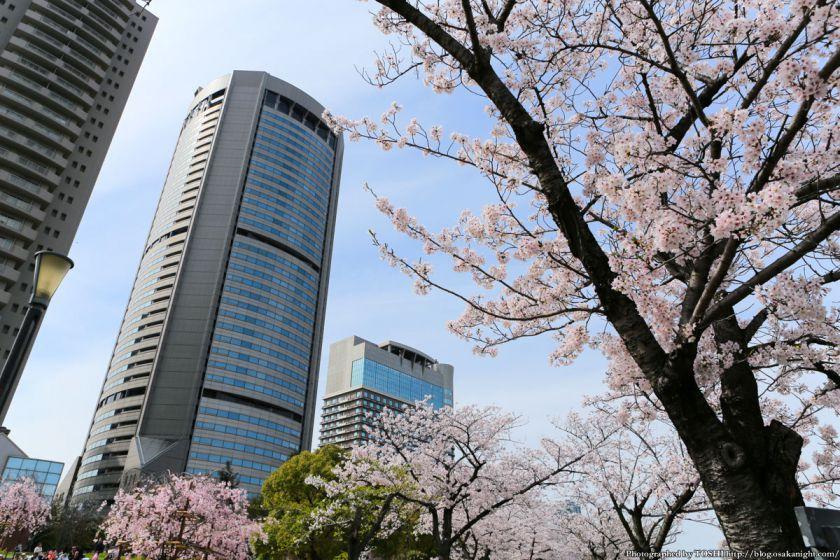 桜之宮公園 桜満開の大川沿い 2013 08 (OAP 大阪アメニティパーク)