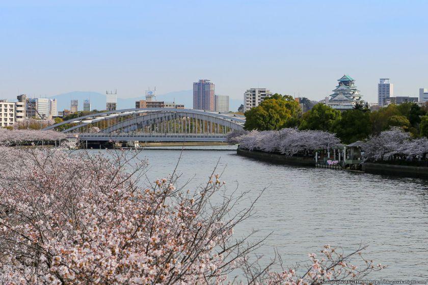 桜之宮公園 桜満開の大川沿い 2013 13 (銀橋と大阪城)