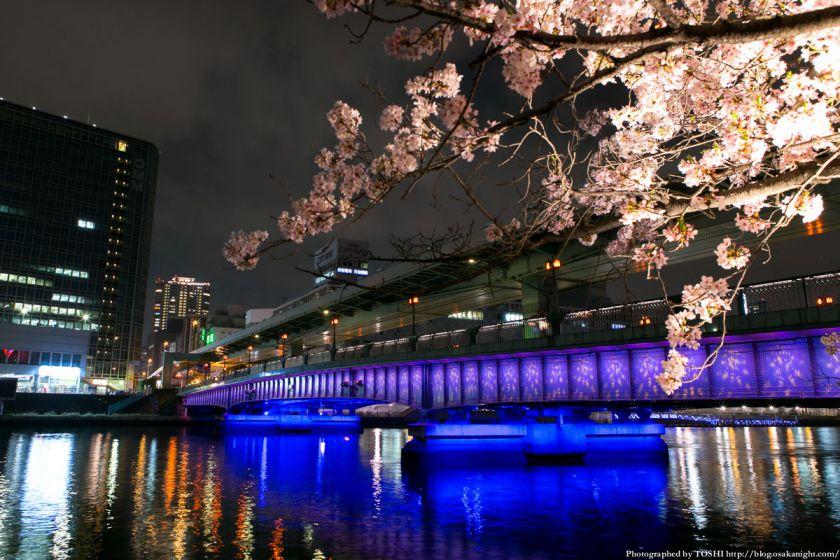 毛馬桜之宮公園 観桜ナイター 2013 01 (天満橋)