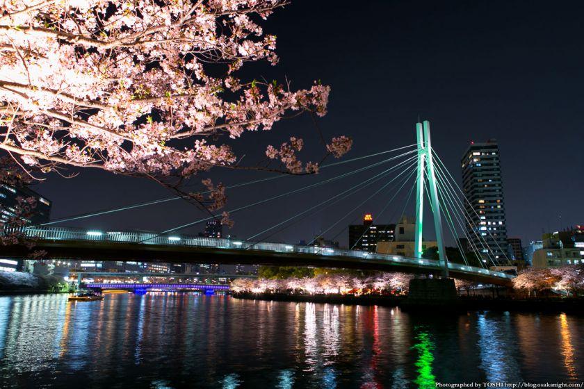 毛馬桜之宮公園 観桜ナイター 2013 04 (川崎橋1)