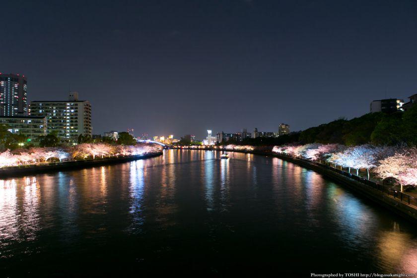 毛馬桜之宮公園 観桜ナイター 2013 07 (川崎橋から銀橋方面)