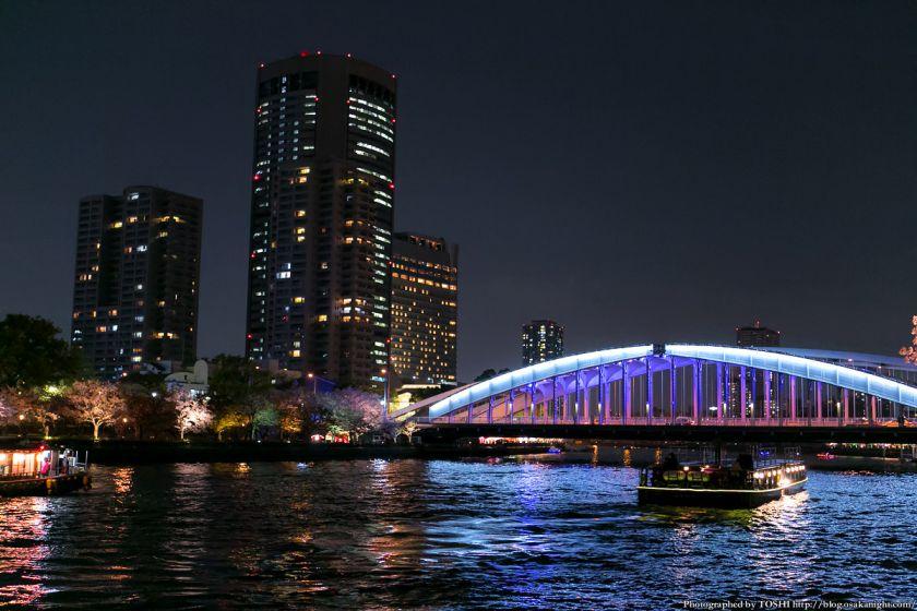 毛馬桜之宮公園 観桜ナイター 2013 12 (銀橋とOAP)