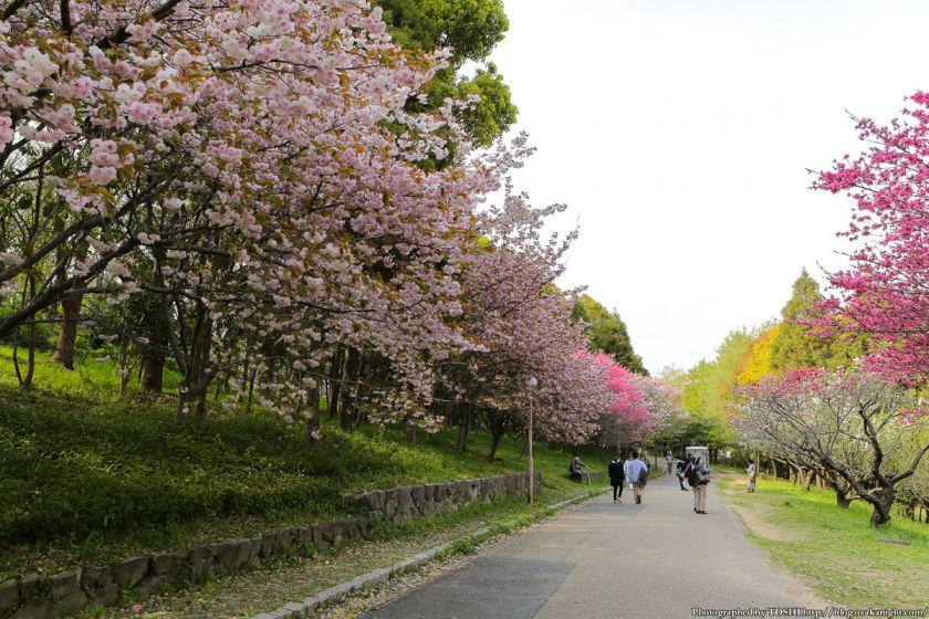 鶴見緑地 2013年4月 02