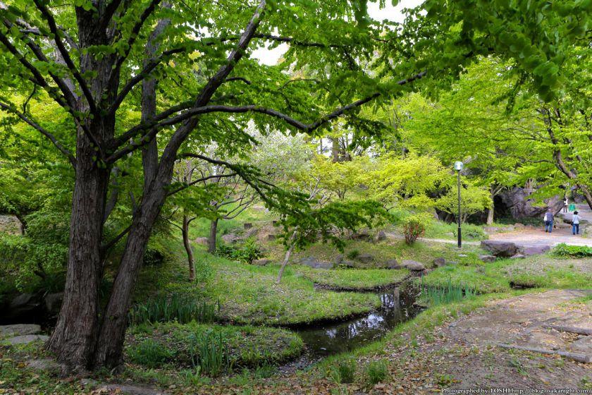 鶴見緑地 2013年4月 07