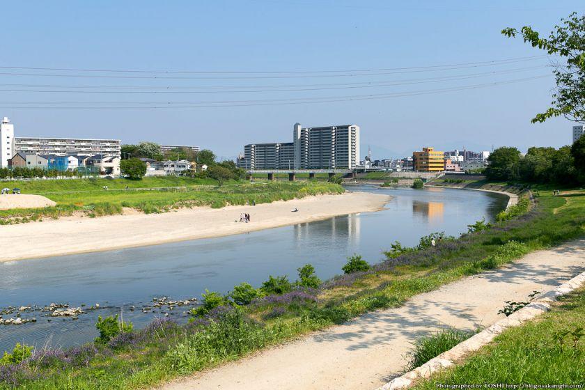 浅香山緑道 大和川河川敷 (大阪府堺市)