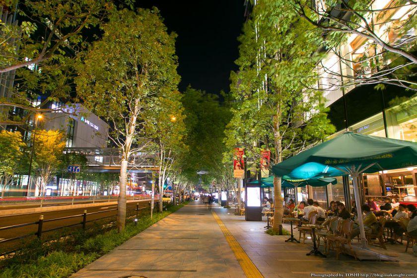 グランフロント大阪 けやき並木 夜景 01