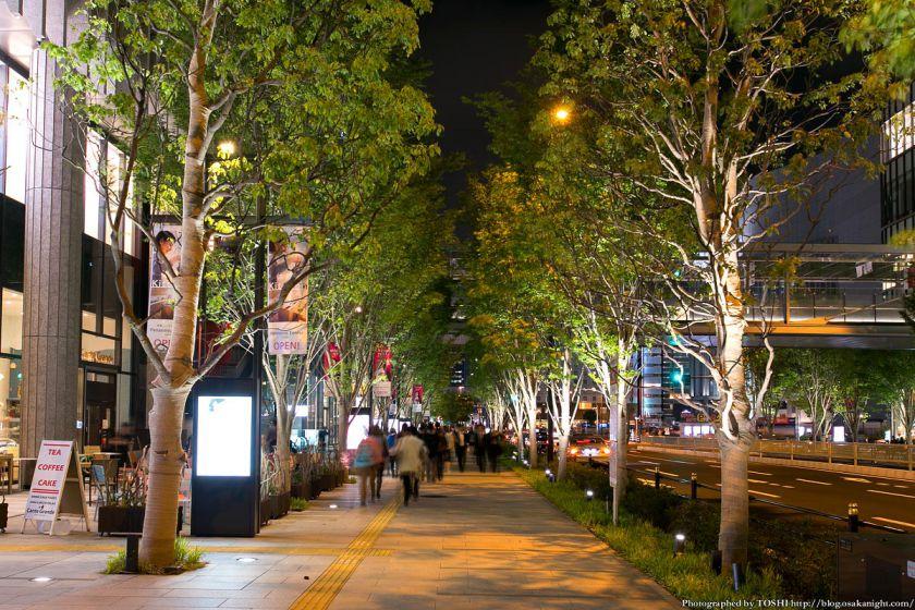 グランフロント大阪 けやき並木 夜景 02