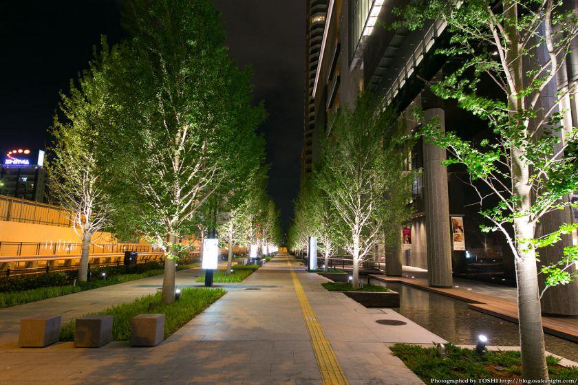 グランフロント大阪 いちょう並木 夜景 01
