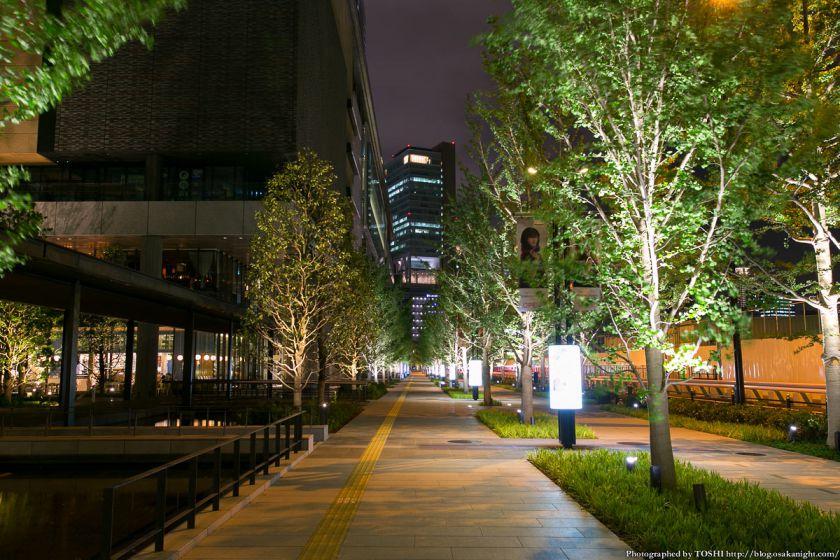 グランフロント大阪 いちょう並木 夜景 02