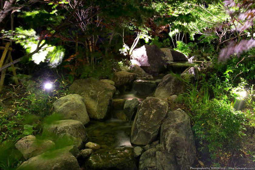 グランフロント大阪 ザ・ガーデン 夜景 05