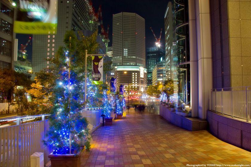 ヒルトン&ハービスのクリスマス・イルミネーション05