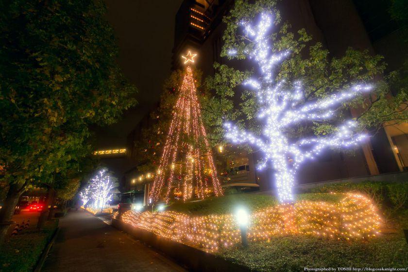 OAP クリスマス・イルミネーション 2013 02