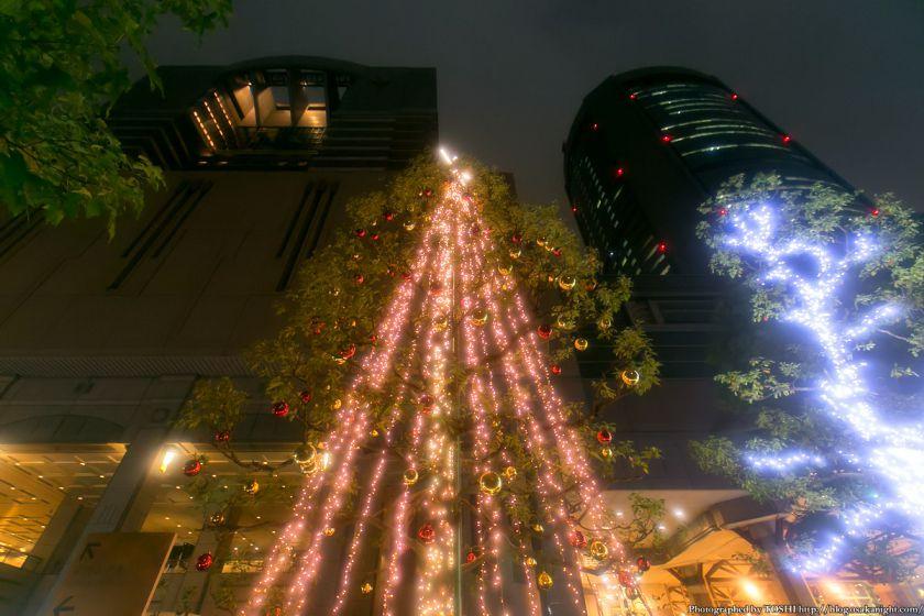 OAP クリスマス・イルミネーション 2013 03