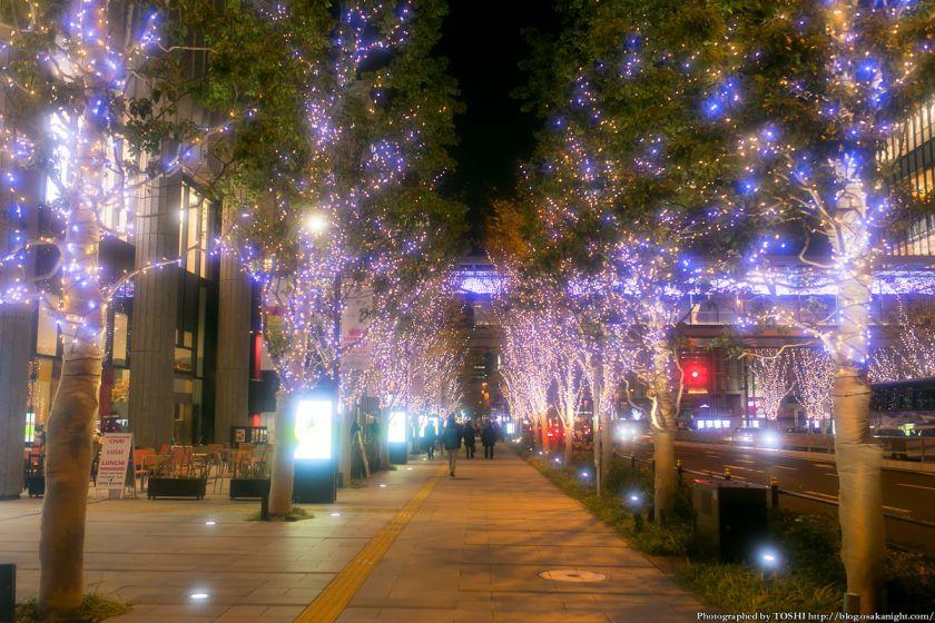 GRAND WISH CHRISTMAS 2013 けやき並木イルミネーション