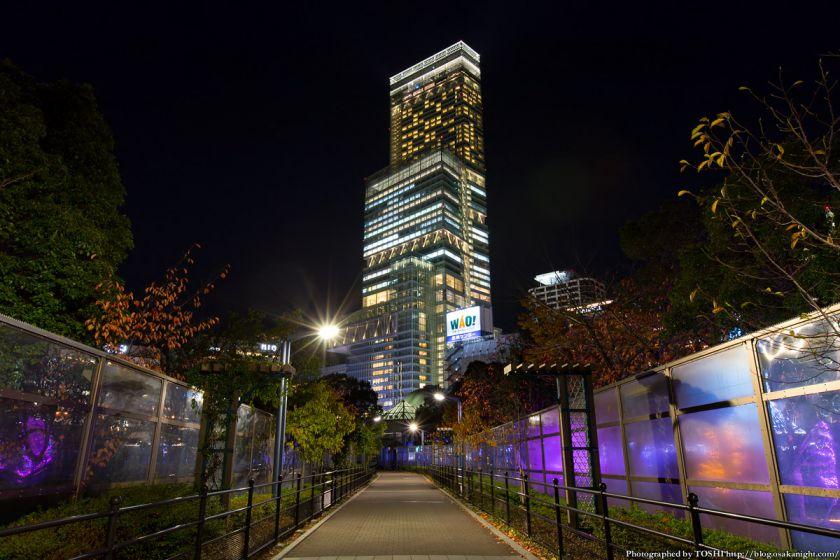 あべのハルカス ライトアップ夜景 2013年11月 01
