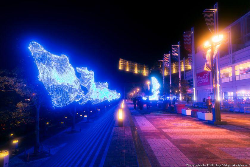 海遊館 地球体感イルミネーション 2013 02