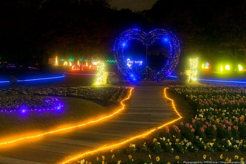 長居公園 植物園 ガーデンイルミネーション 2013 04