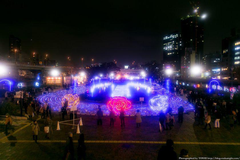 OSAKA光のルネサンス2013 ローズライトファンタジア 02