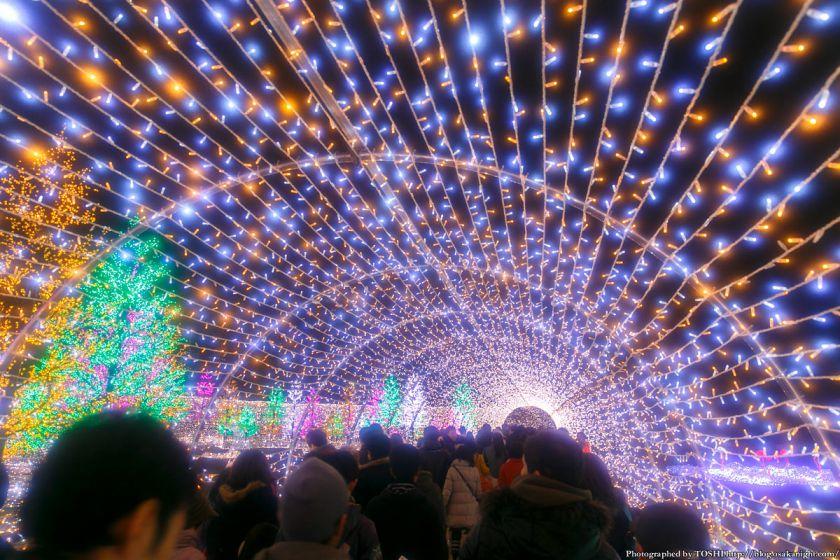 大阪城 イルミネーション 2013 光の回廊 02